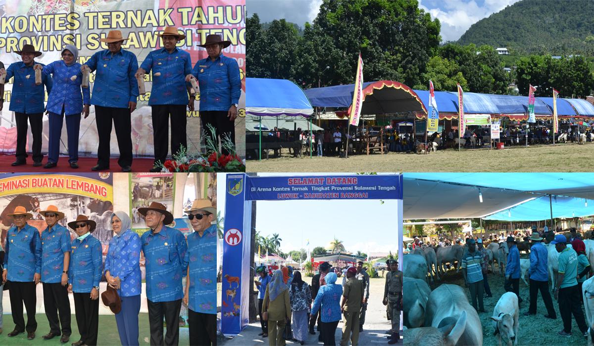 Lomba dan Kontes Ternak Tahun 2016 Tingkat Provinsi Sulawesi Tengah